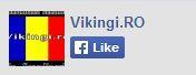 Vikingi.ro